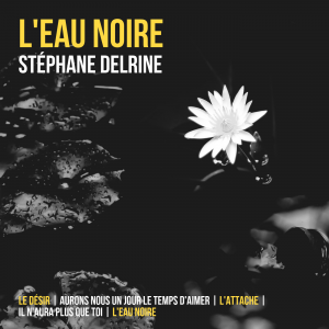 Album hors commerce volume 1 Stéphane Delrine